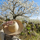 Woman looking cherry blossom. Jerte Valley, Caceres. Spring in Spain - PhotoDune Item for Sale