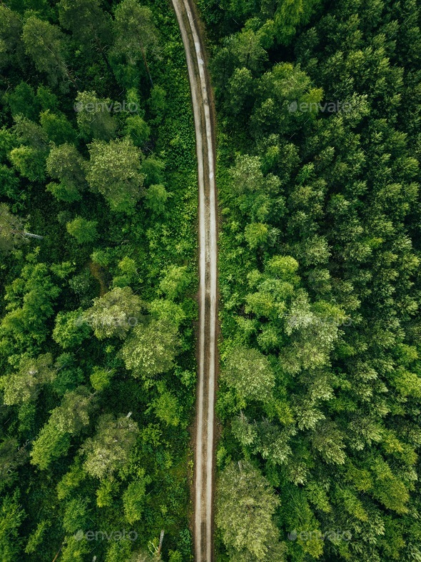 Aerial top view of a country road through a fir forest in summer rural Finland - Stock Photo - Images