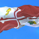 Flag of Howard County - VideoHive Item for Sale