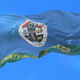 Flag of Los Angeles County - VideoHive Item for Sale