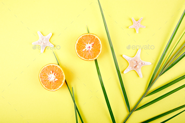 Orange fruit, starfish and palm leaves - Stock Photo - Images