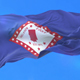 Flag of Faulkner County - VideoHive Item for Sale