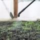 Farmer Spraying Pesticide in Farm  - VideoHive Item for Sale