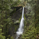 Marymere Falls in Olympic National Park Washington - PhotoDune Item for Sale
