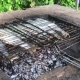 Grilled Fish on the Grill - VideoHive Item for Sale