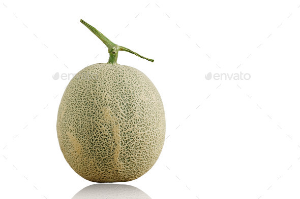 Melon on white background - Stock Photo - Images