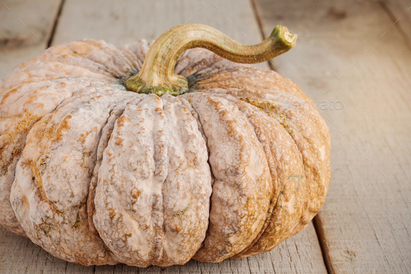 Pumpkin on wooden - Stock Photo - Images
