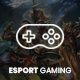 eSport - Gaming WordPress Theme - ThemeForest Item for Sale
