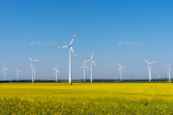 Wind power plants in a blooming rapeseed field - Stock Photo - Images