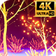 Light Forest 4k - VideoHive Item for Sale