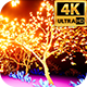 Glowing Garden 4k - VideoHive Item for Sale