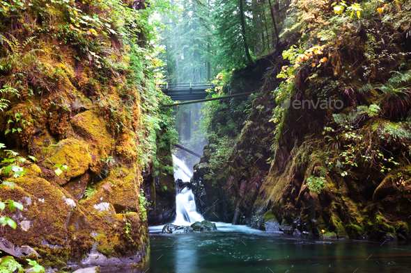 Sol Duc - Stock Photo - Images