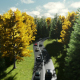 Road amoung the Trees - VideoHive Item for Sale