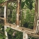 Frame of Abandoned Old Greenhouse - VideoHive Item for Sale