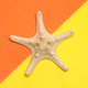 Minimal summer concept of starfish on yellow and orange - PhotoDune Item for Sale