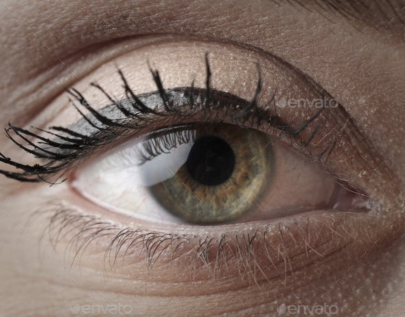 Green eye - Stock Photo - Images
