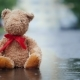 Lonely Teddy Bear Sits in a Puddle in the Rain.  Video - VideoHive Item for Sale