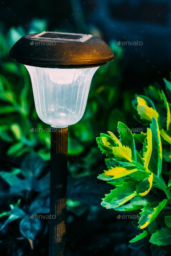 Solar Garden Light, Lantern In Flower Bed. Garden Design. Solar - Stock Photo - Images