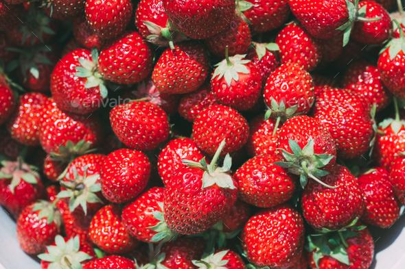 Strawberry. Strawberries. Organic Berries Background - Stock Photo - Images