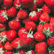 Strawberry. Strawberries. Organic Berries Background - PhotoDune Item for Sale