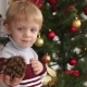 Portrait of a Little Boy Near a Christmas Tree. - VideoHive Item for Sale