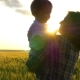 Mom Holds a Child in the Arms at Sunset Against the Background of a Wheat Field - VideoHive Item for Sale