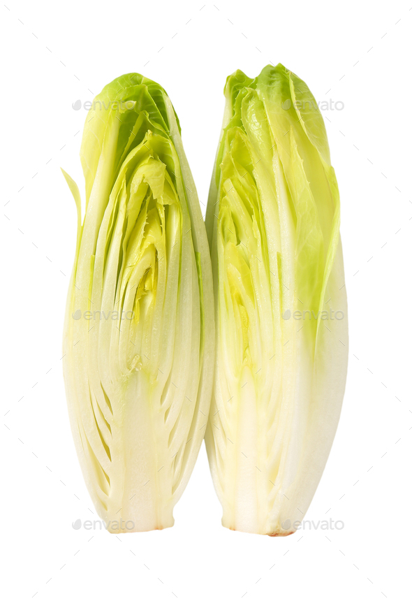 fresh Belgian endive - Stock Photo - Images