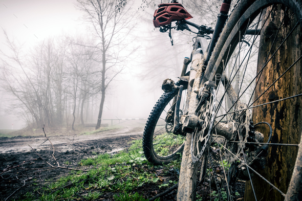 Mountain bike and helmet in autumn woods - Stock Photo - Images
