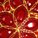 Red Jewel Flowers - VideoHive Item for Sale