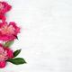 floral arrangement of peonies - PhotoDune Item for Sale