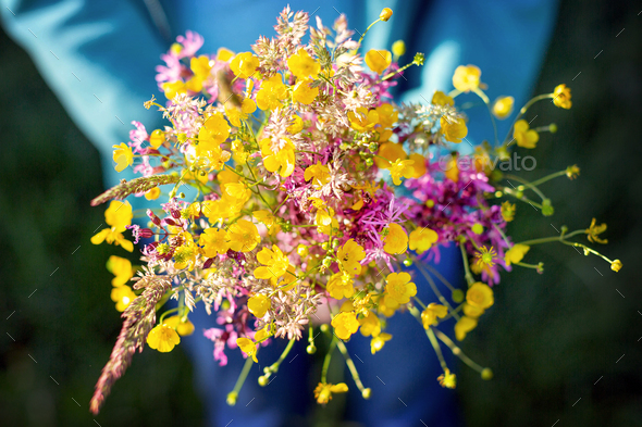 Bunch of field flowers - Stock Photo - Images