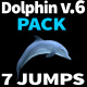 Dolphin 6 Jumps - VideoHive Item for Sale