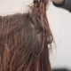 Unrecognizable Young Hairdresser Drying Her Clients Hair with Hairdryer - VideoHive Item for Sale