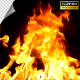 Realistic Fire Line in Super Slow Motion - Alpha Channel v.13 - VideoHive Item for Sale