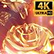 Golden Rose Backdrop 4k - VideoHive Item for Sale