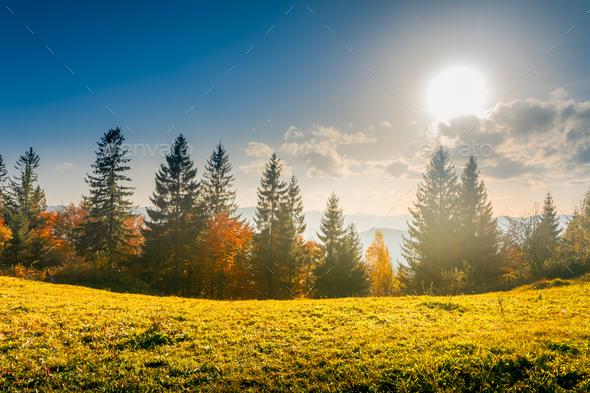 Colorful autumn landscape - Stock Photo - Images