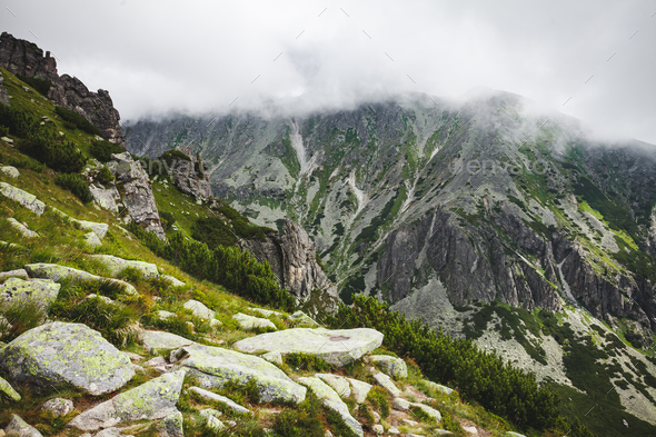 The mist getting down on the Tatras, Slovakia. - Stock Photo - Images