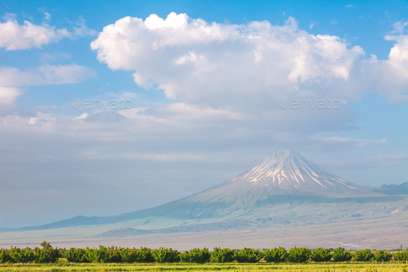 Ararat mountain and field - Stock Photo - Images