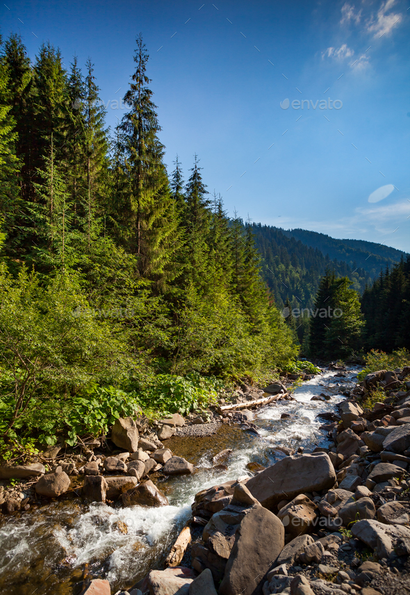 Mountain river stream. Summer nature landscape - Stock Photo - Images