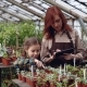Greenhouse Owner and Her Cute Daughter Are Counting Pot Plants in Workplace and Working with Tablet - VideoHive Item for Sale