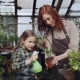 Adorable Little Girl Is Helping Her Mother To Wash Green Plants with Sprinkler While Working - VideoHive Item for Sale