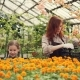 Pretty Woman Gardener and Her Cheerful Daughter Are Taking Pots with Beautiful Flowers From Plastic - VideoHive Item for Sale