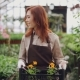 Pretty Young Woman Is Carrying Container with Pot Flowers in Greenhouse - VideoHive Item for Sale
