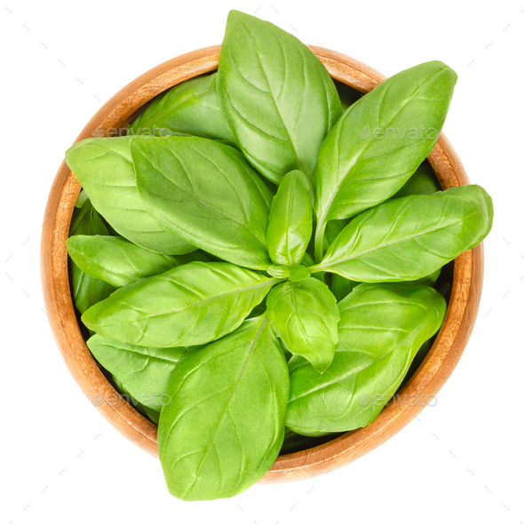 Fresh green basil leaves in wooden bowl over white - Stock Photo - Images