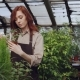 Pretty Red-haired Woman Is Spraying Plants and Checking Seedlings Inside Spacious Greenhouse - VideoHive Item for Sale