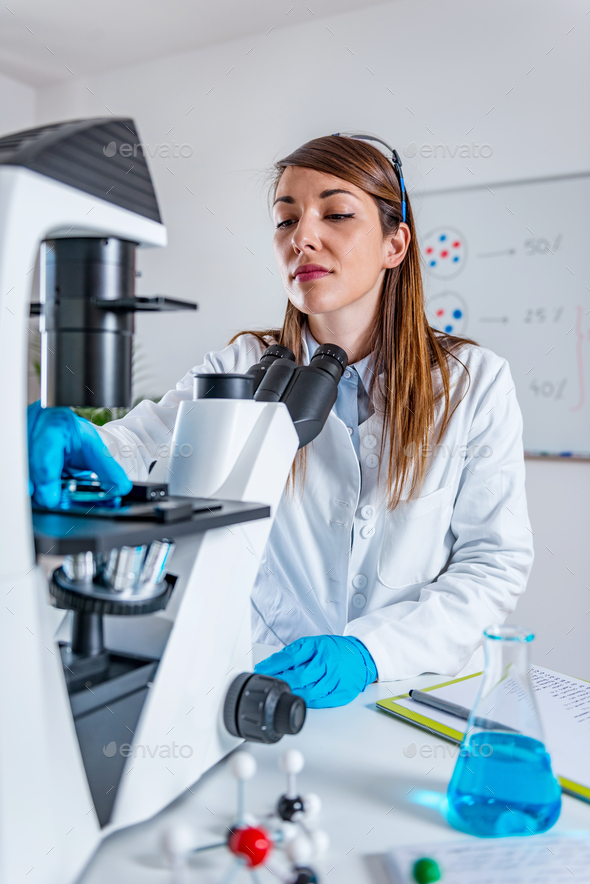 Scientific research - Stock Photo - Images