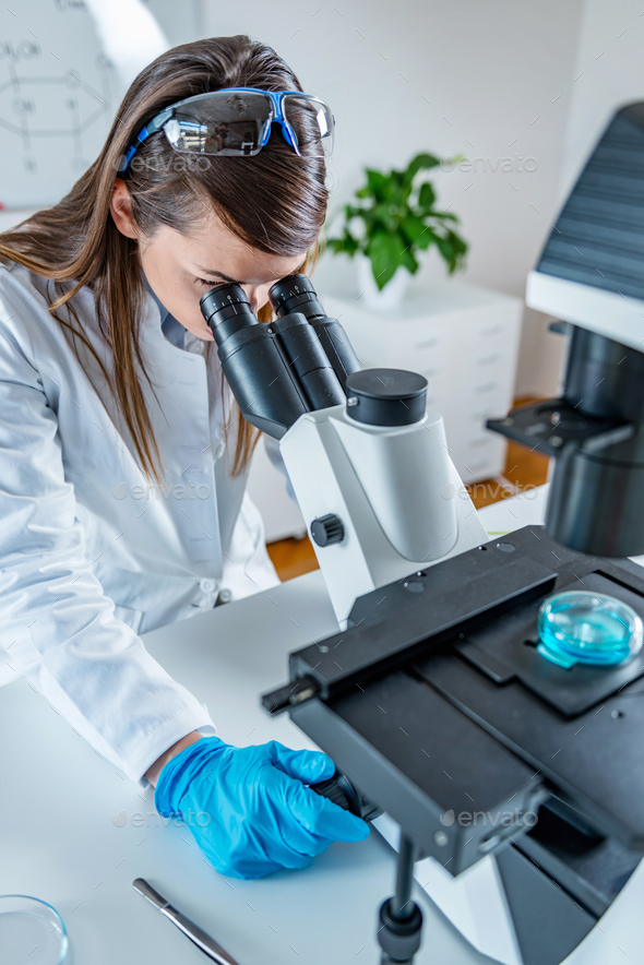 Young scientist working in her lab - Stock Photo - Images