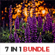 7 IN 1 Lightroom Presets Bundle - GraphicRiver Item for Sale
