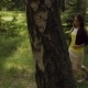 A Girl Walks through the Forest - VideoHive Item for Sale