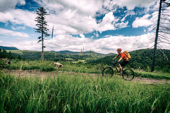 Mountain biker cycling riding in woods and mountains - Stock Photo - Images